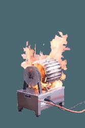 FS Electric motor