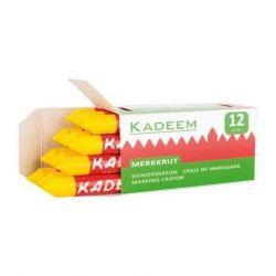 Vet Markeerkrijt geel 12 stuks